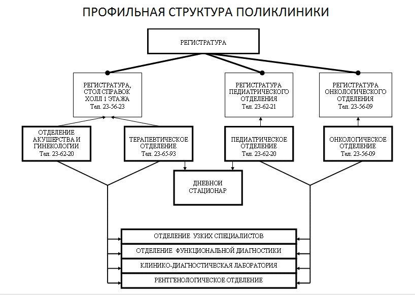 """КГБУЗ  """"Городская поликлиника 7 """" МЗ ХК.  Структура."""